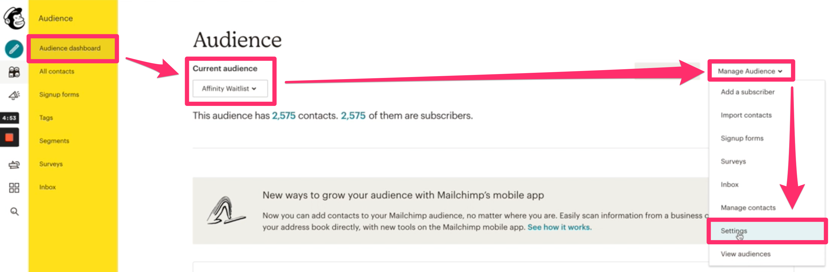 Mailchimp_Audience_Settings.png